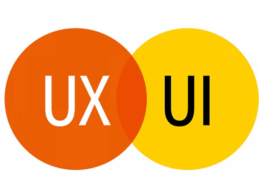 фото веб дизайнер